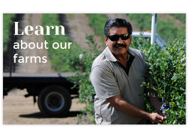 Learn About Our Farms