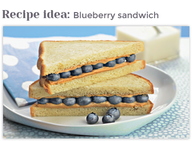 Blueberry Sandwich