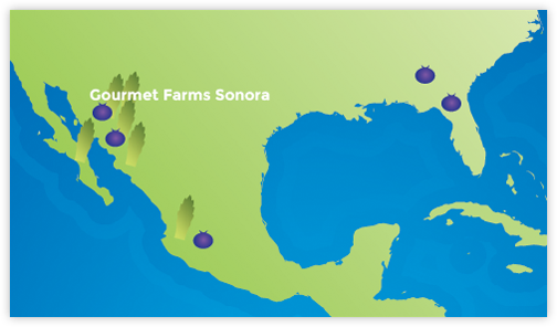 Gourmet Farms Sonora